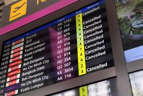 Surge in travel-linked gripes last year: Case