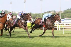 Mystery Power (right) showing good potential in his debut win on April 10.