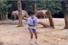 Teen who pulled zoo stunt slapped with charges, including vandalism