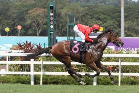 Red Ocean looks too deep for his rivals
