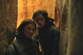 Critics say Dune film will thrill ardent fans, bore others