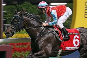 The David Hayes-trained Harmony N Blessed scoring in record time under jockey Zac Purton.