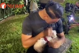 A good Samaritan rescued a dog stranded in Siglap Canal.