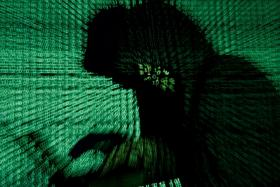 'Tech support' scammers on the prowl, police warn