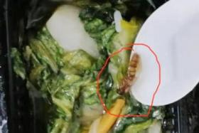 Sembcorp Marine has apologised to its workers living at Westlite Jalan Tukang Dormitory over poor hygiene and quality in their catered food, which was provided by an external caterer engaged by the firm.