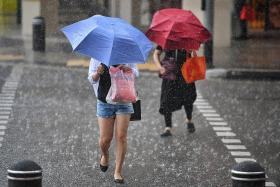 Expect more thundery showers, higher temperatures this month