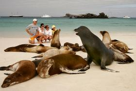 Unique wildlife and dramatic landscapes at Galapagos Islands