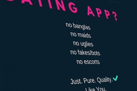 Dating Sites flak