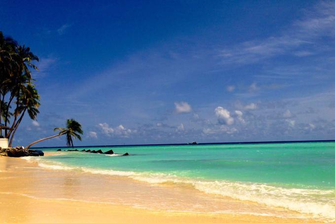 Killed while sitting on boat in Maldives Latest Singapore